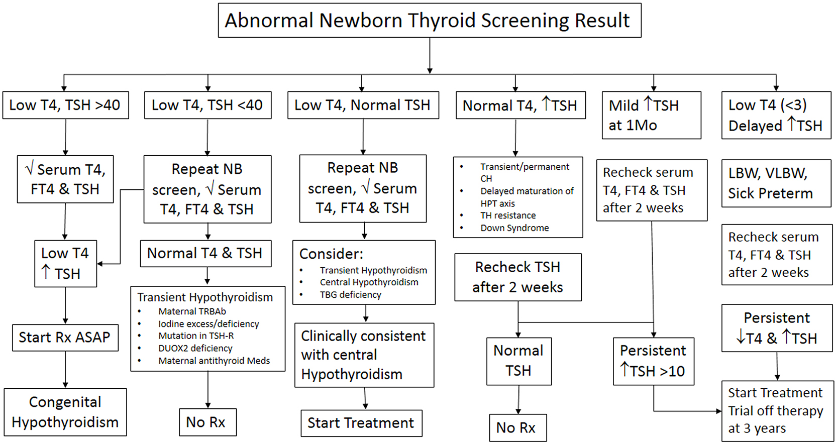 Transient Hypothyroidism In The Newborn To Treat Or Not To Treat